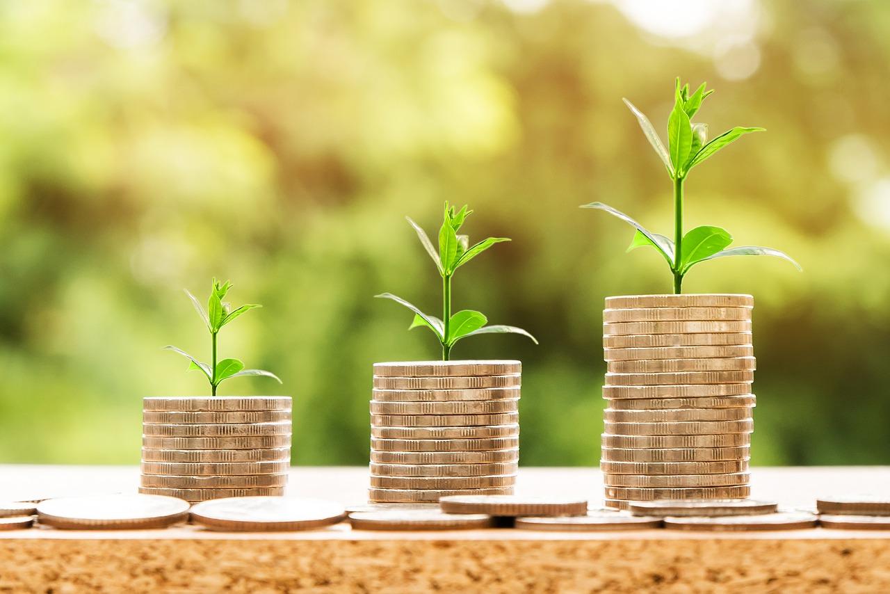 Ciri-ciri Keuangan Yang Sehat